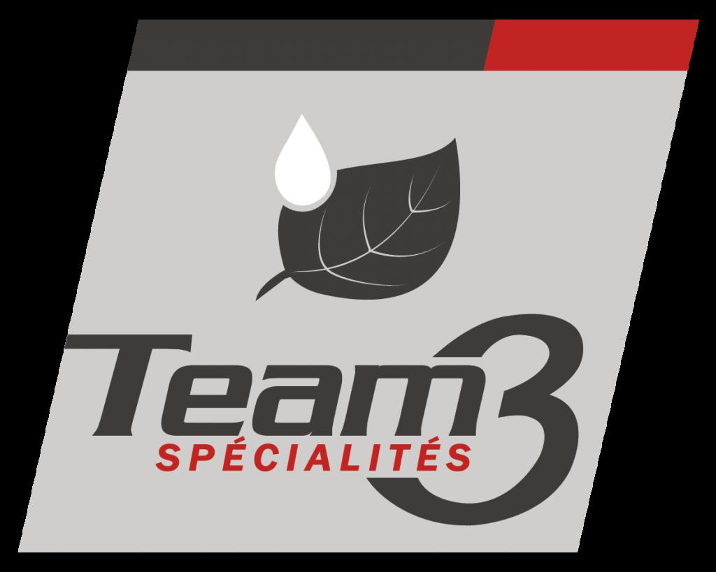 TEAM3_spécialités_logo_quadri