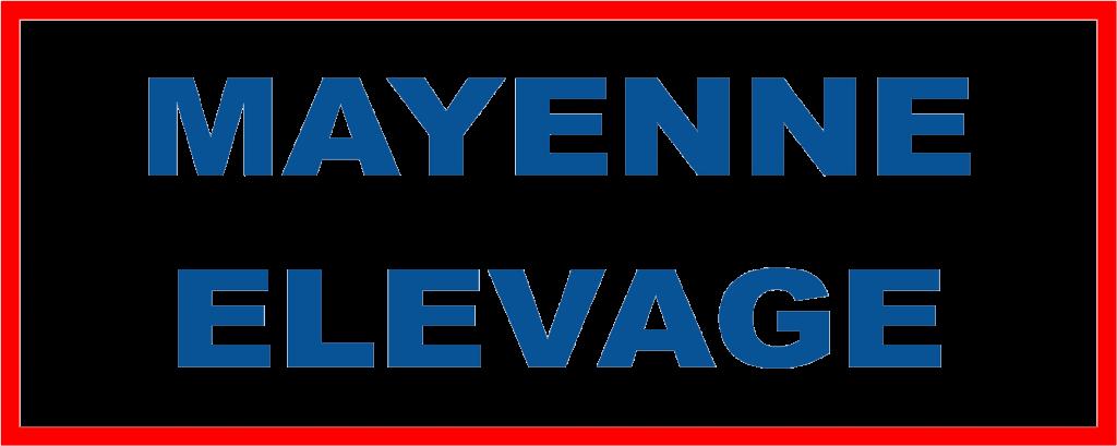mayenne elevage