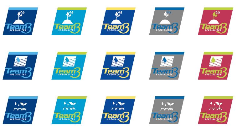 Team 3 spécialités, projet de logo
