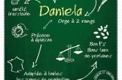 Publicité Agricole - variété Daniela